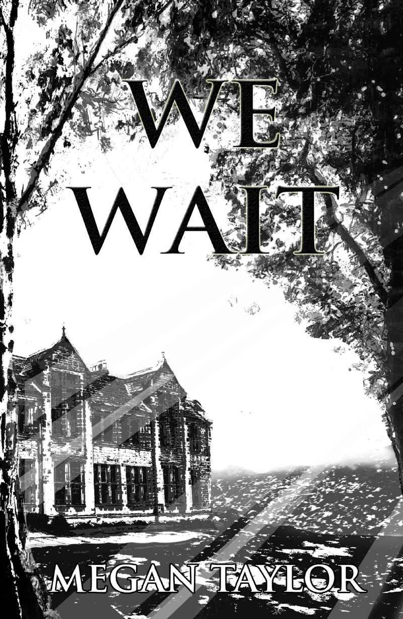 We Wait, by Megan Taylor - cover